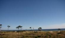 Ventas, Terreno Punta Ballena (Maldonado)